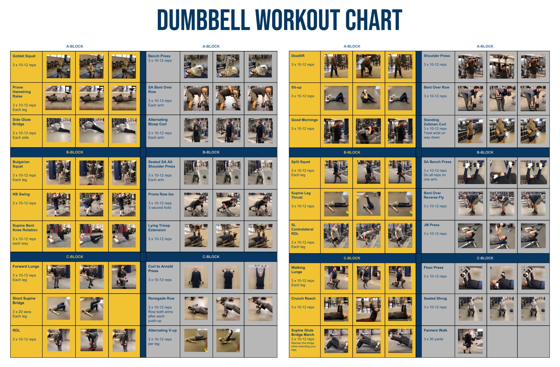 Dumbbell Workout Chart Printable
