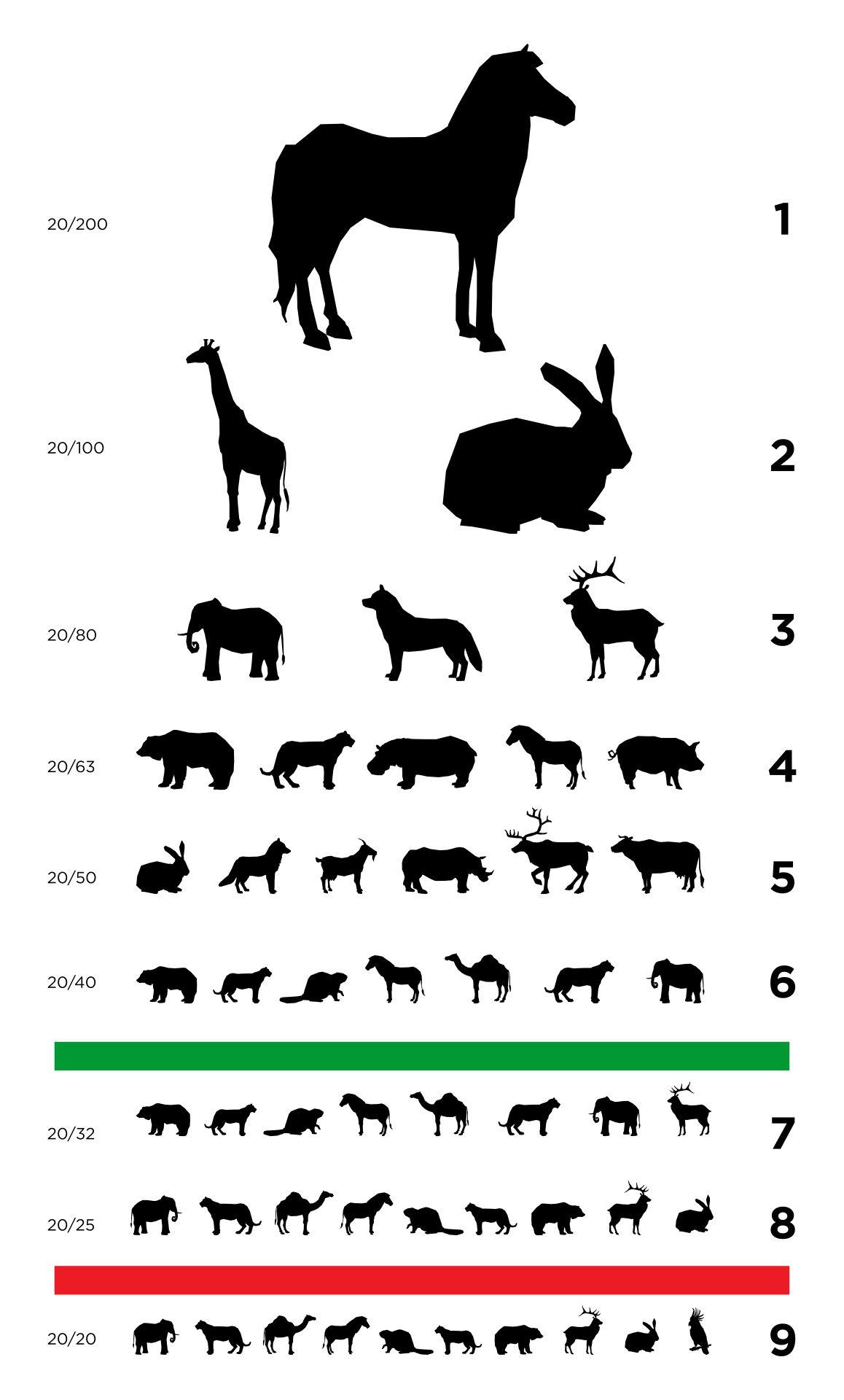 Free Printable Preschool Eye Chart