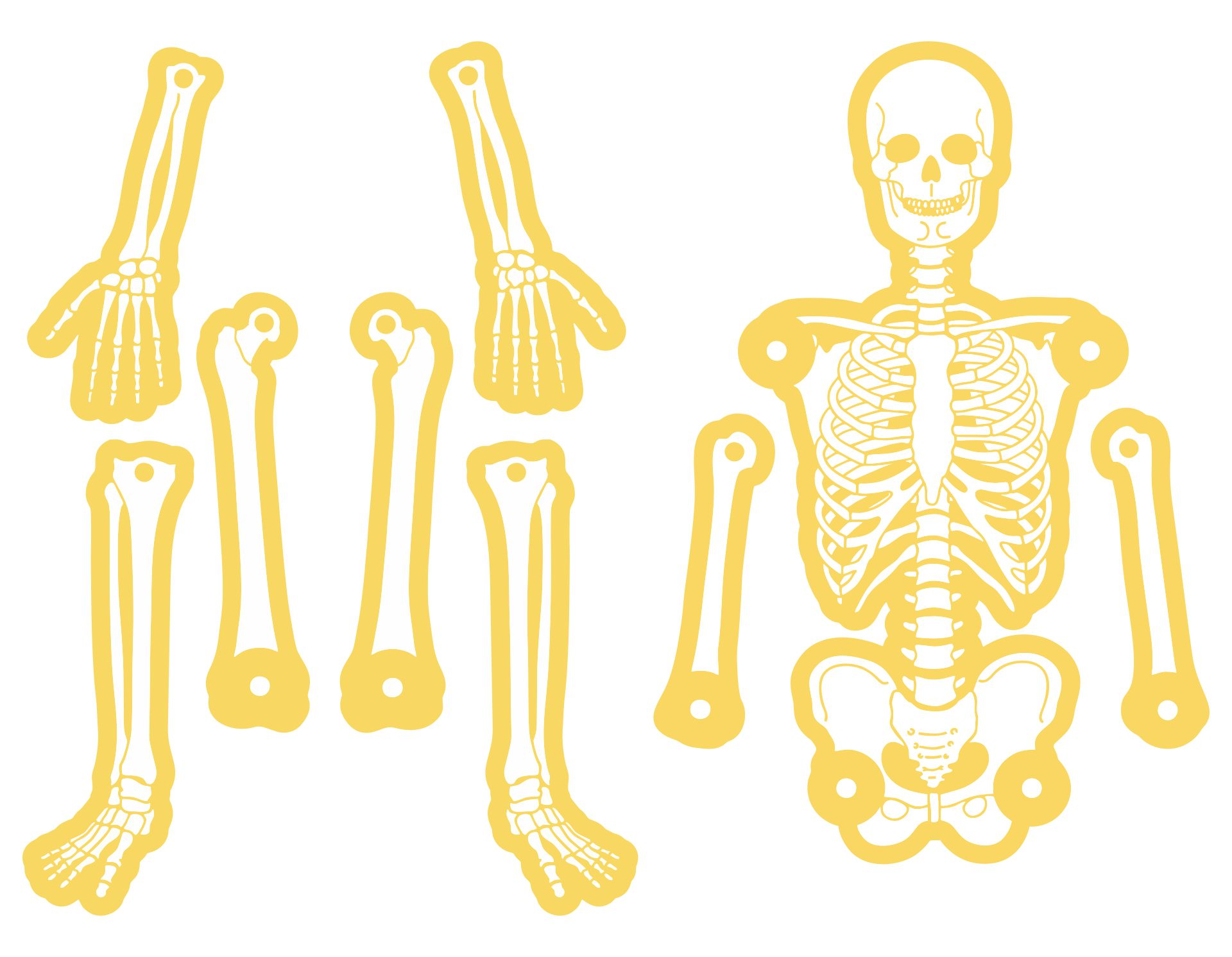 Large Printable Skeleton Template