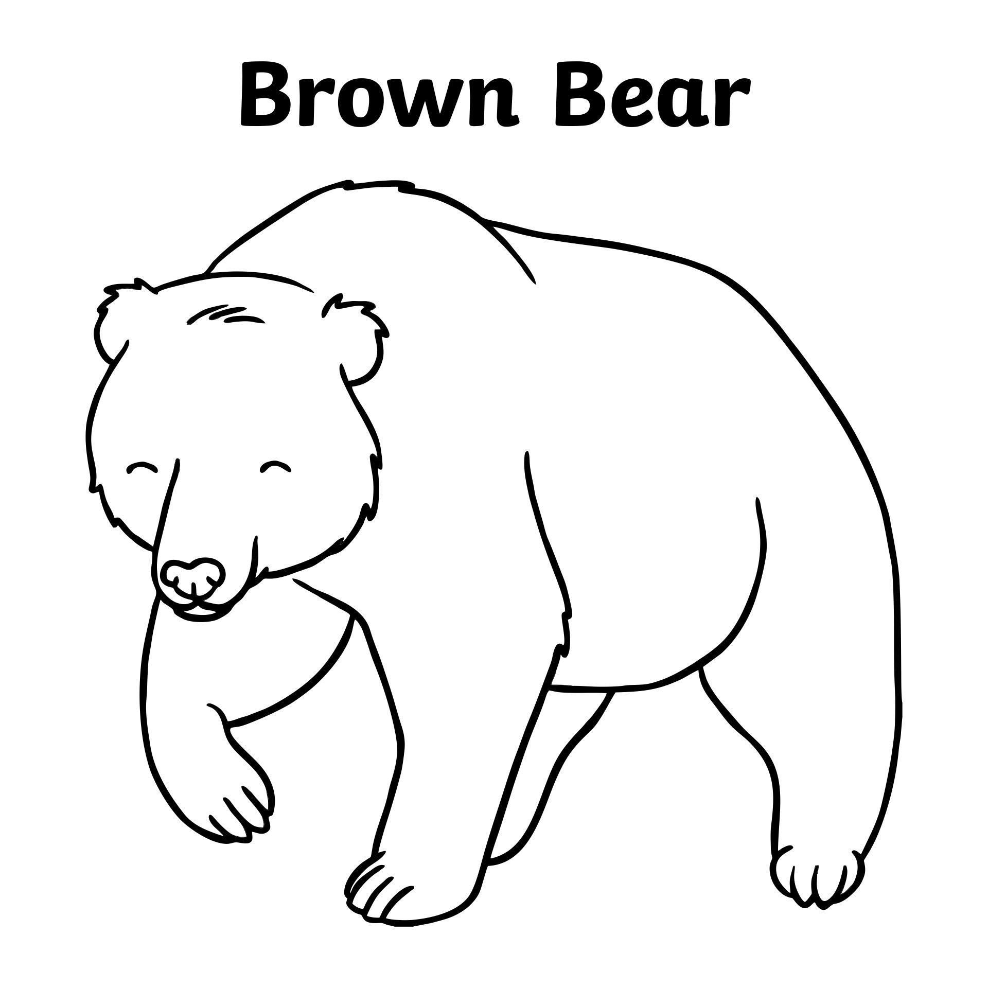 Brown Bear Brown Bear Coloring Sheets