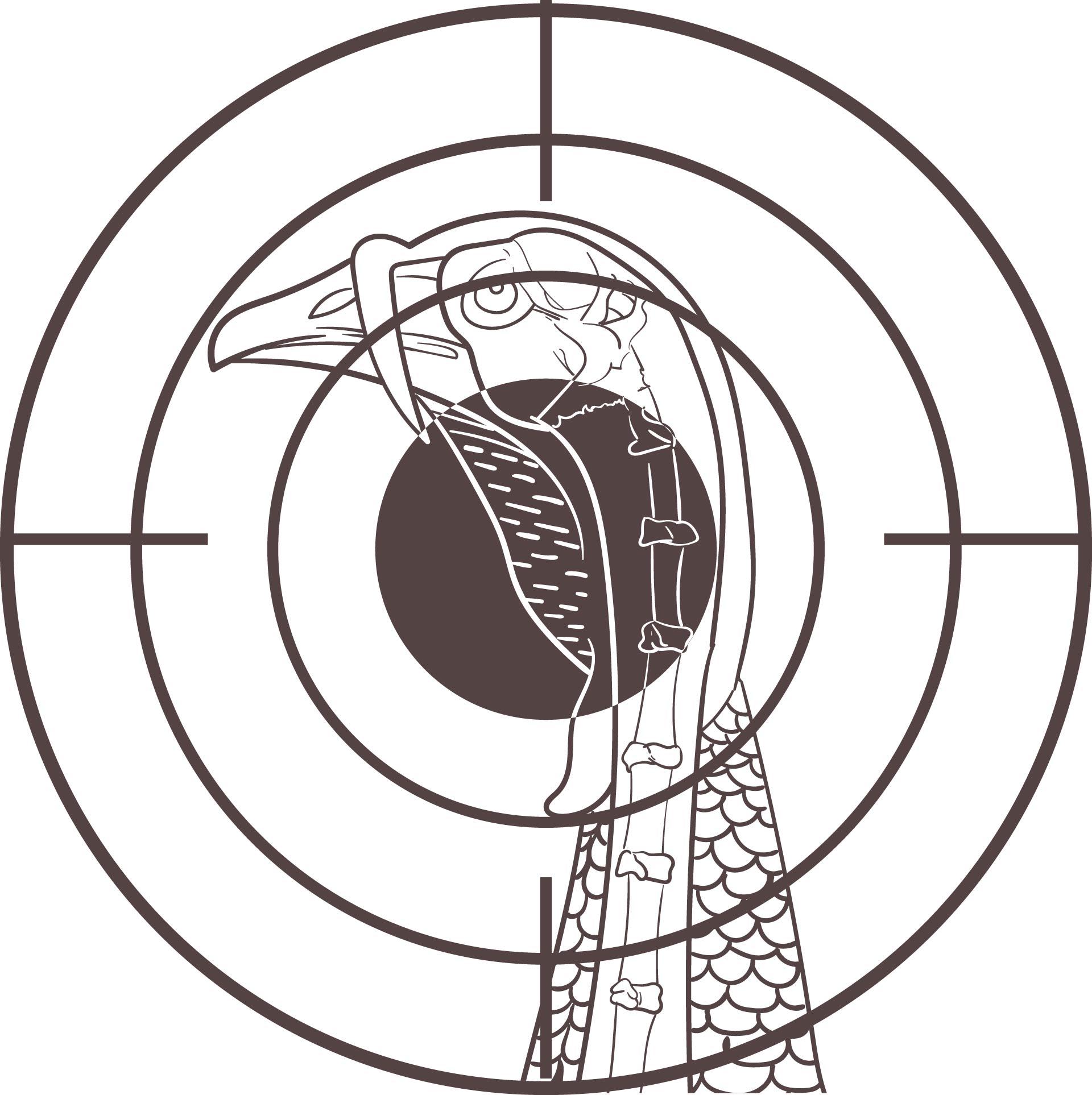 Printable Turkey Pattern Targets