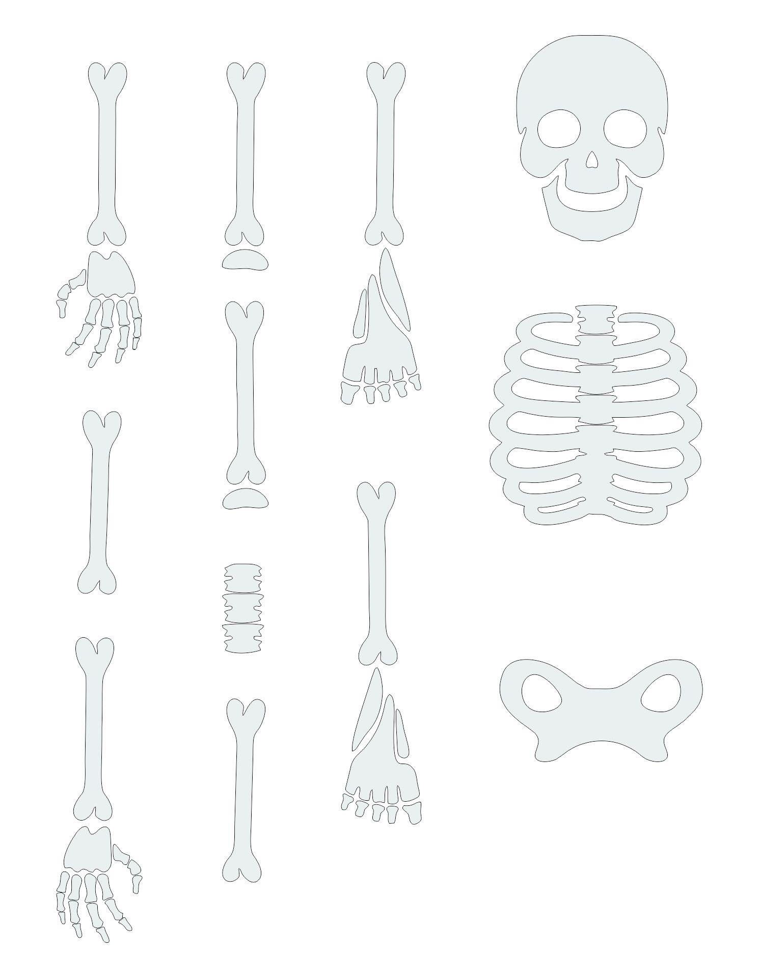 Halloween Skeleton Printables Parts