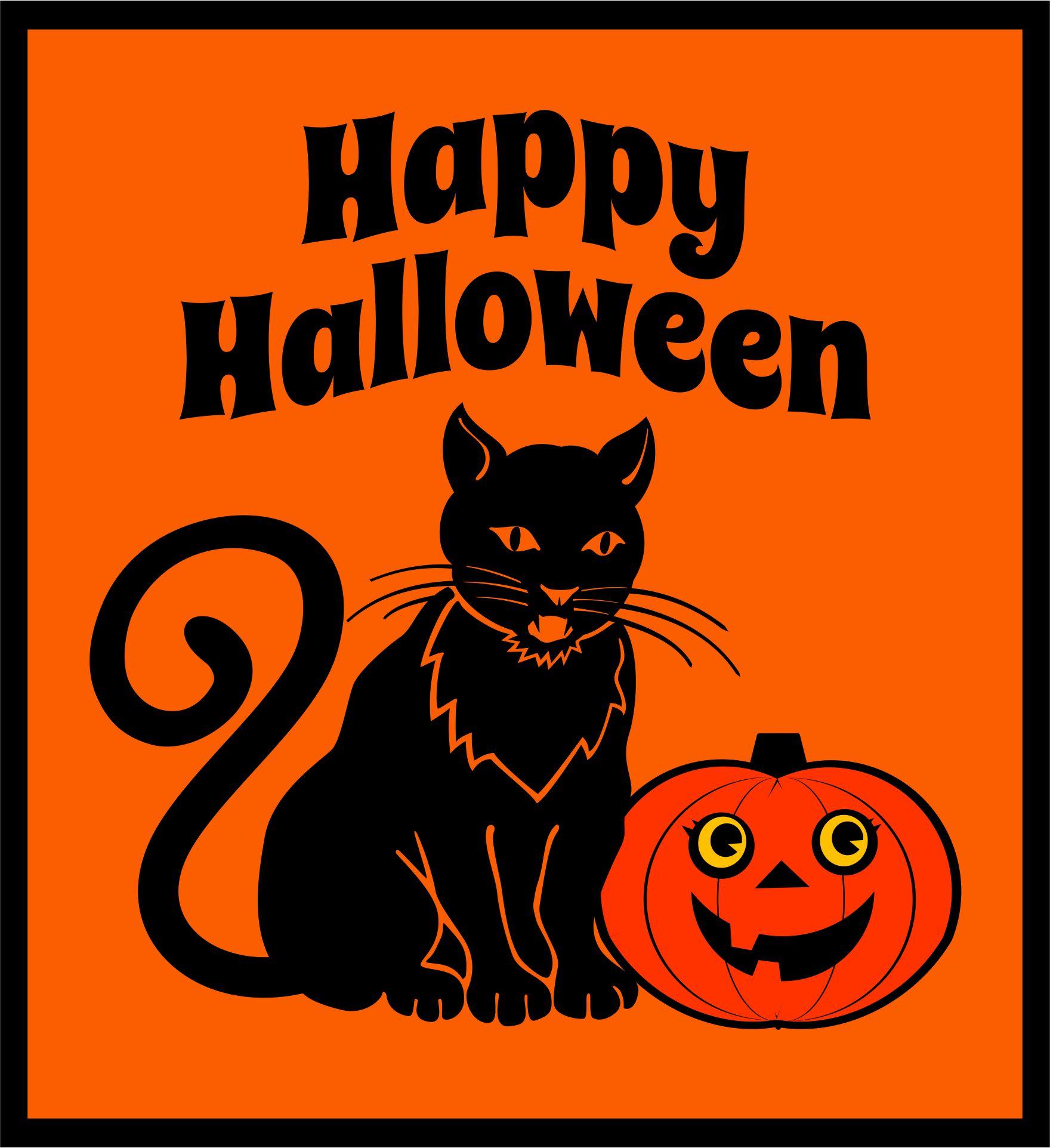 Vintage Halloween Crepe Paper Banner Orange & Black