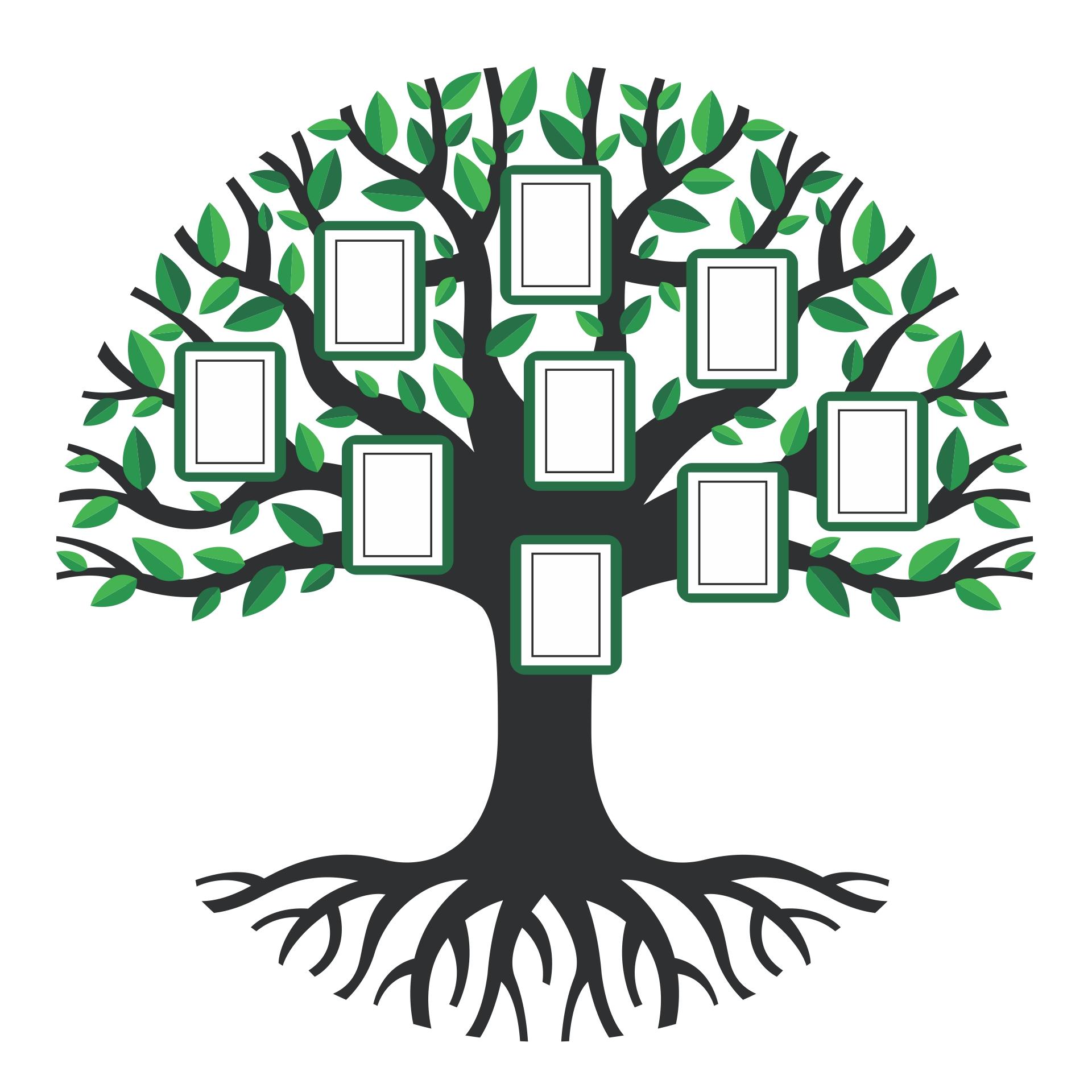 Printable Tree Pattern