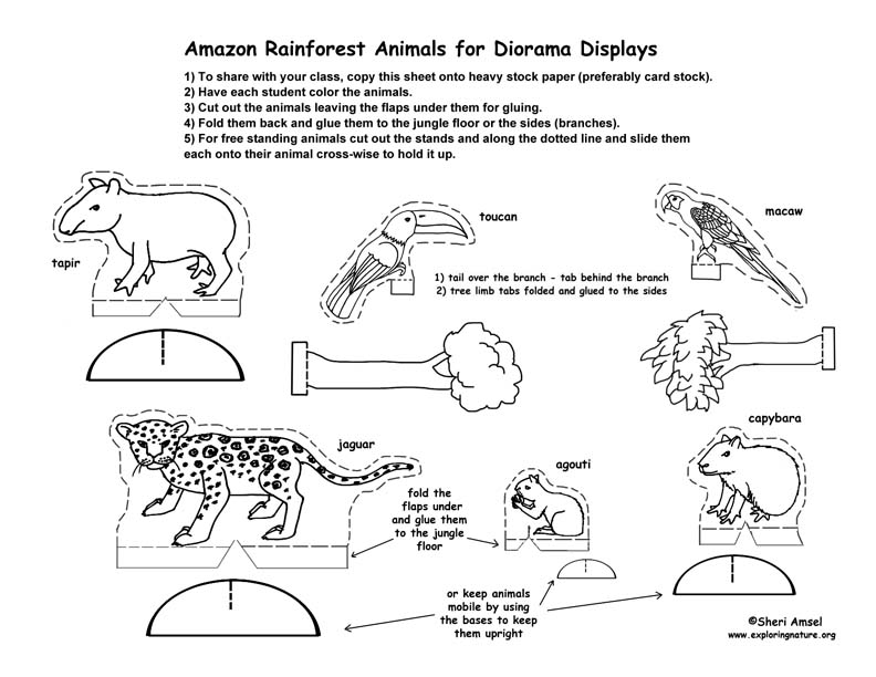 6 Images of Forest Printable Diorama Templates