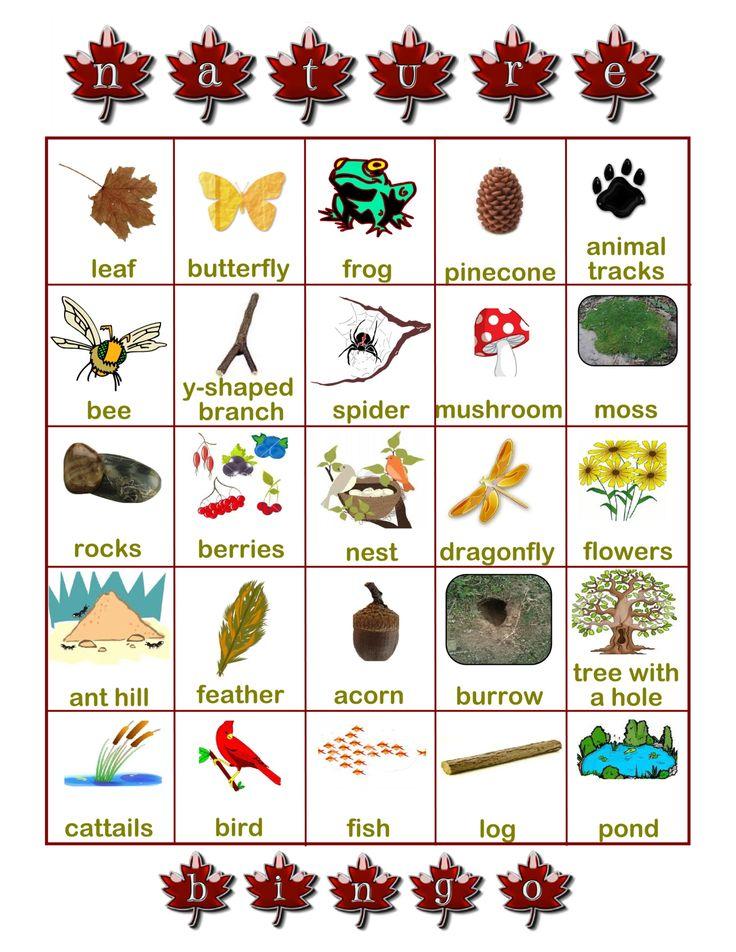 5 Images of Printable Nature Scavenger Hunt Bingo