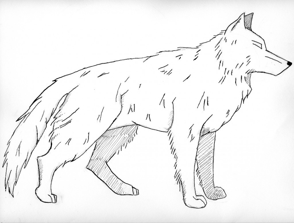 6 Images of Wolf Coloring Pages Printable