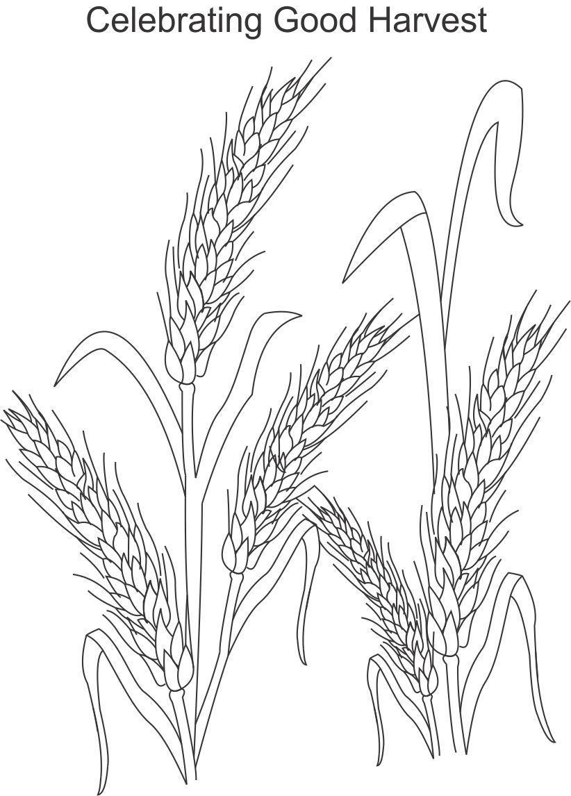 5 best images of harvest festival printable coloring for Harvest festival coloring pages