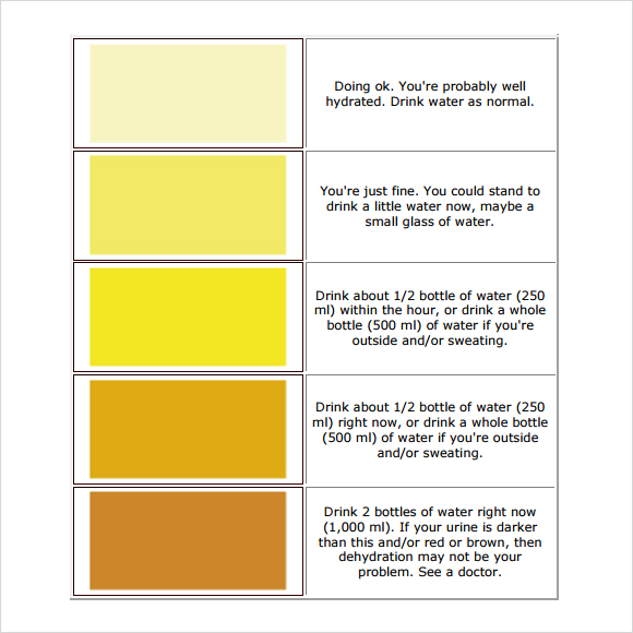 5 Best Images Of Printable Color Chart Color Spectrum