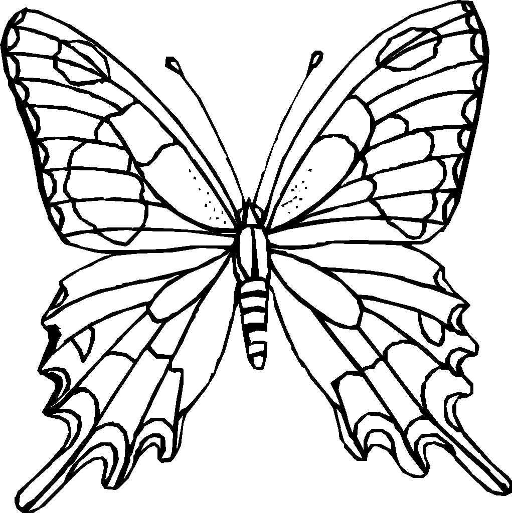 4 Images of Free Printable Adult Coloring Pages Butterflies