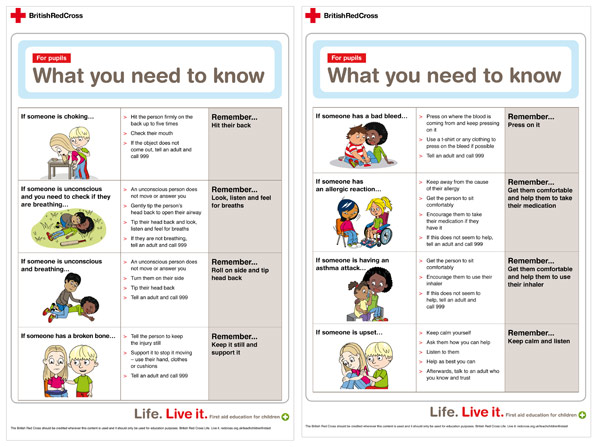 9 Images of First Aid Cards Printables