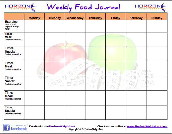Doc28472240 Food Diary Template Free 5 Free Food Journal – Food Diary Template Download