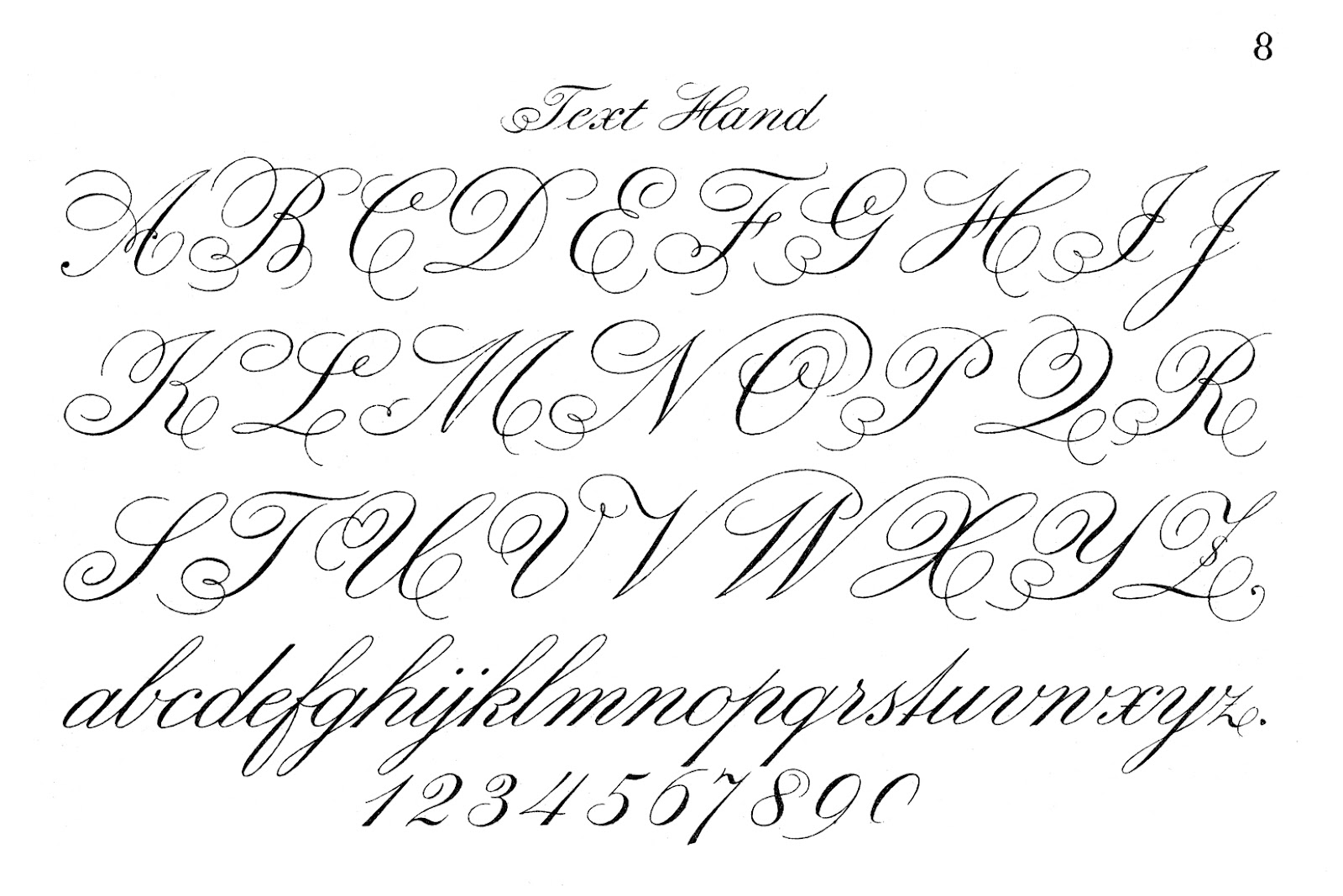Fancy Script Cursive Letters