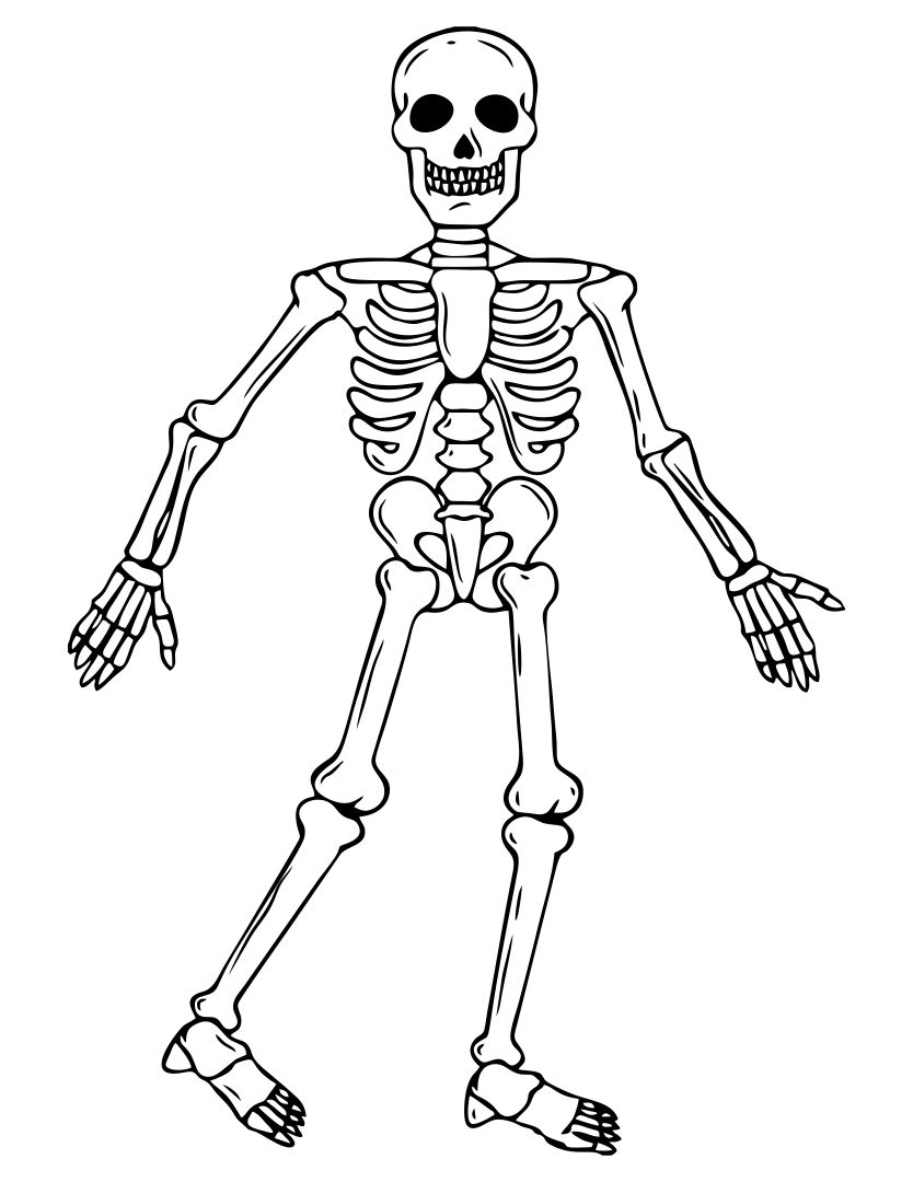 4 Images of Halloween Skeleton Coloring Pages Printables