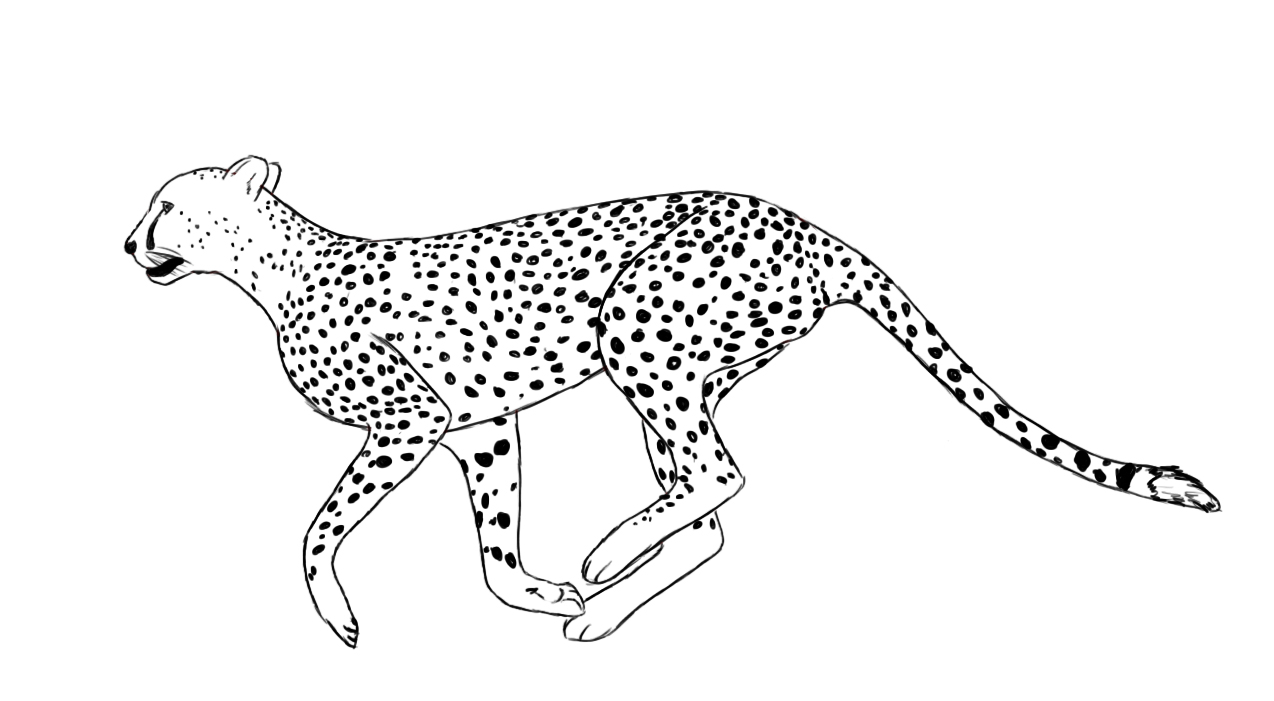 6 Images of Printable Cheetah Print