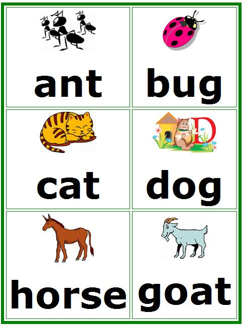 8 Images of Printable Kindergarten Flash Cards