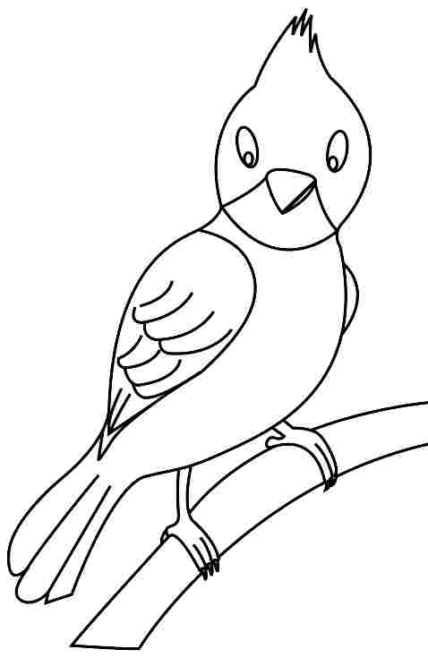 birds coloring pages for preschoolers - photo#48