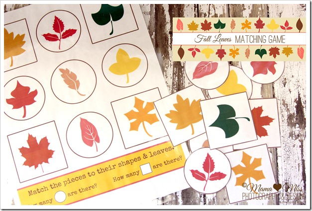 4 Images of Fall Matching Game Printable
