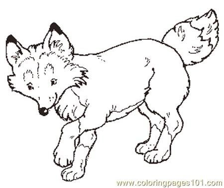 4 Images of Printable Coloring Pages Fox