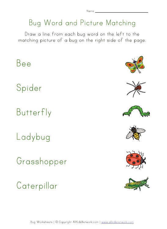 Worksheet Free Insect Worksheets 8 best images of free printable pictures insects insect worksheets