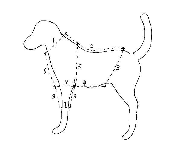 5 Images of Free Printable Sewing Patterns Dog
