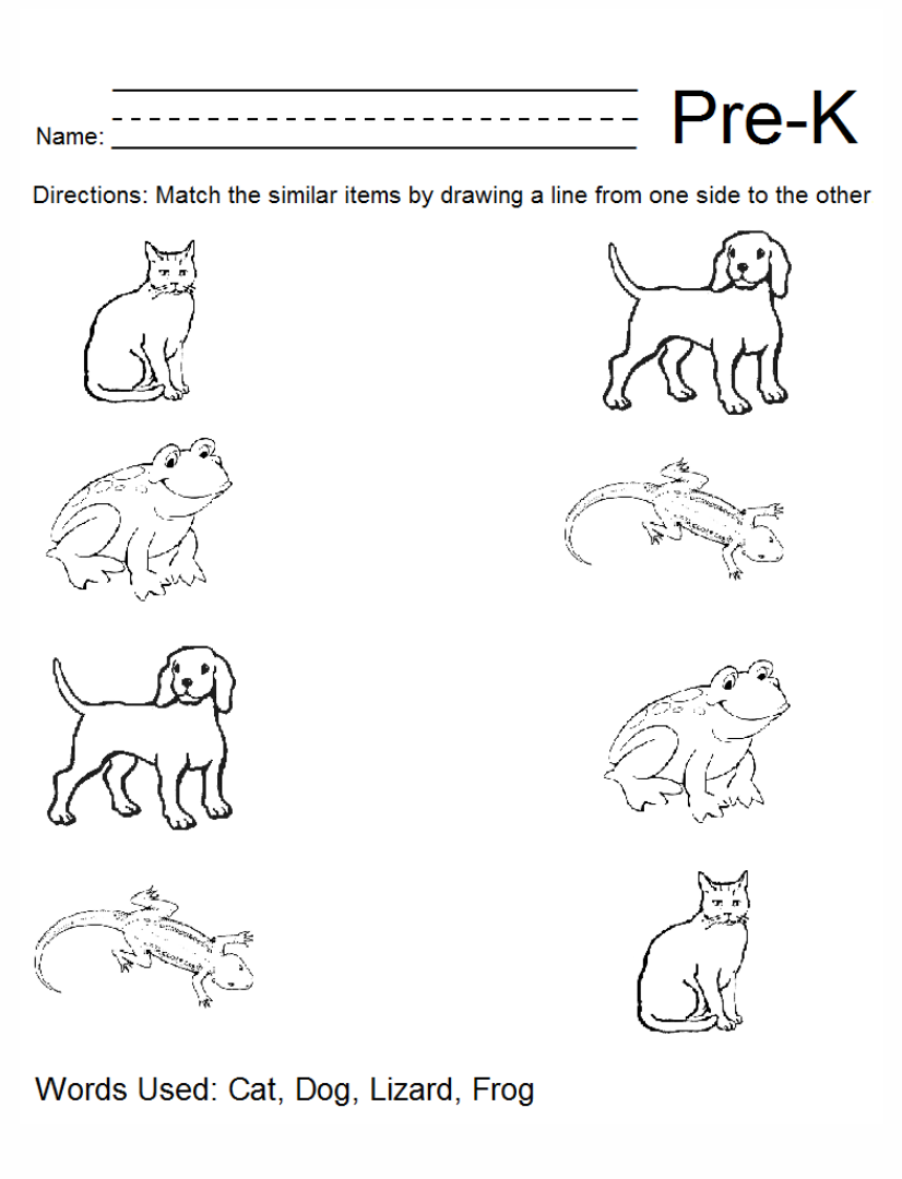 Worksheets Pre Kindergarten Printable Worksheets pre kindergarten worksheets printable intrepidpath 6 best images of k packets free