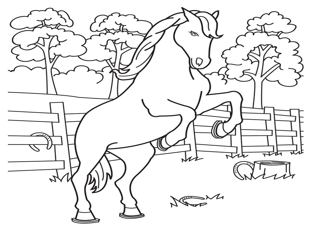 3 Images of Free Printable Horse Coloring Pages