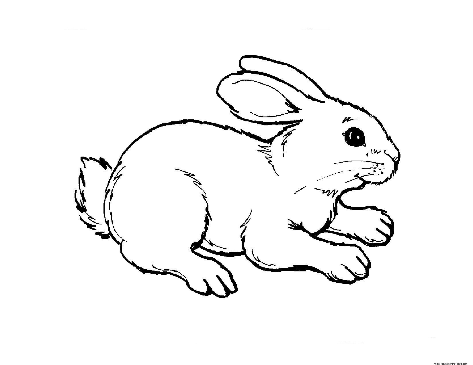5 Images of Free Printable Animal Coloring Pages Adult