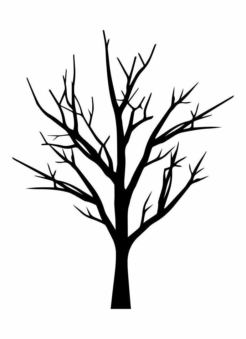 Cherry Tree Branch Silhouette