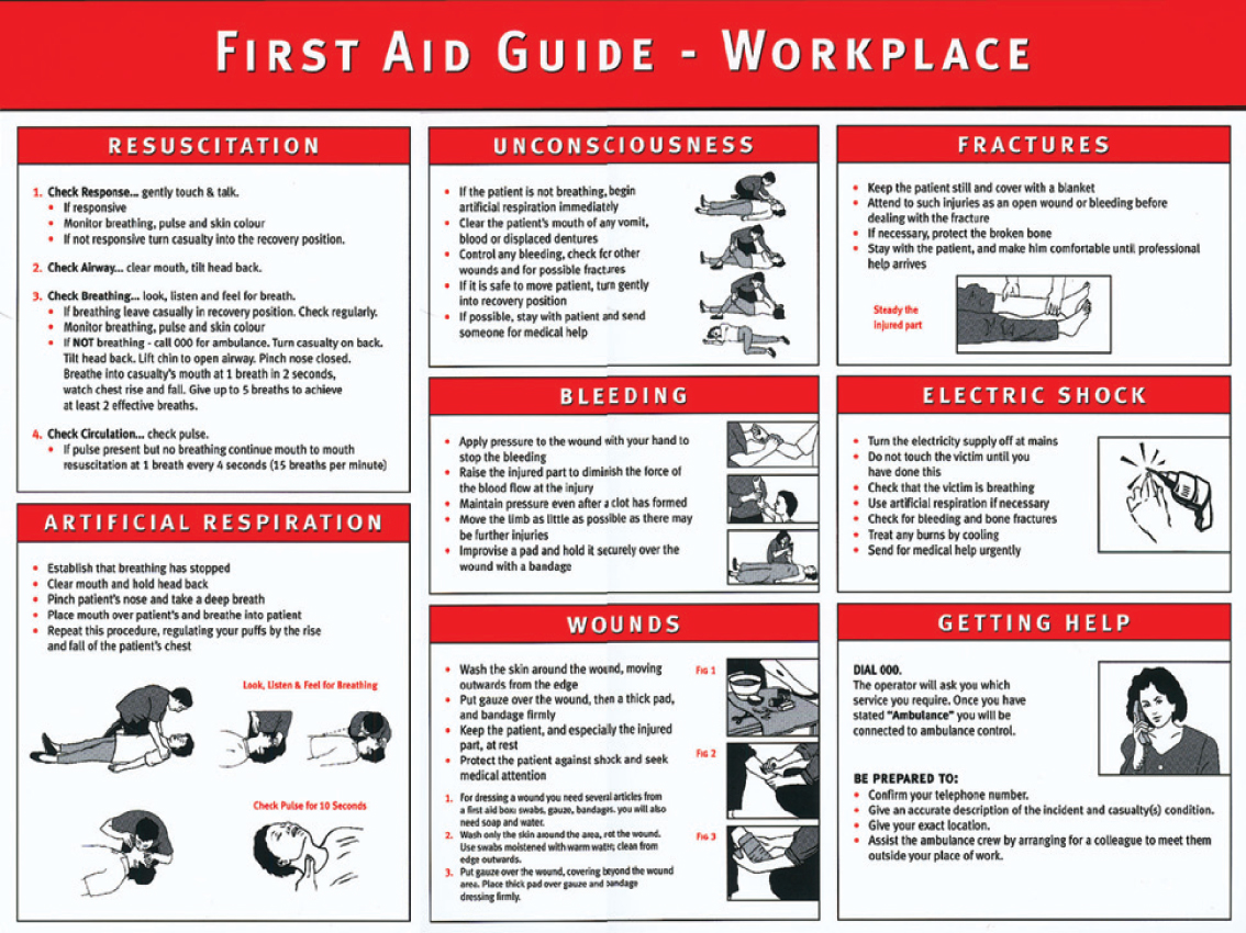 Unforgettable image intended for first aid guide printable