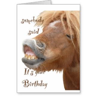 Funny Horse Birthday Cards
