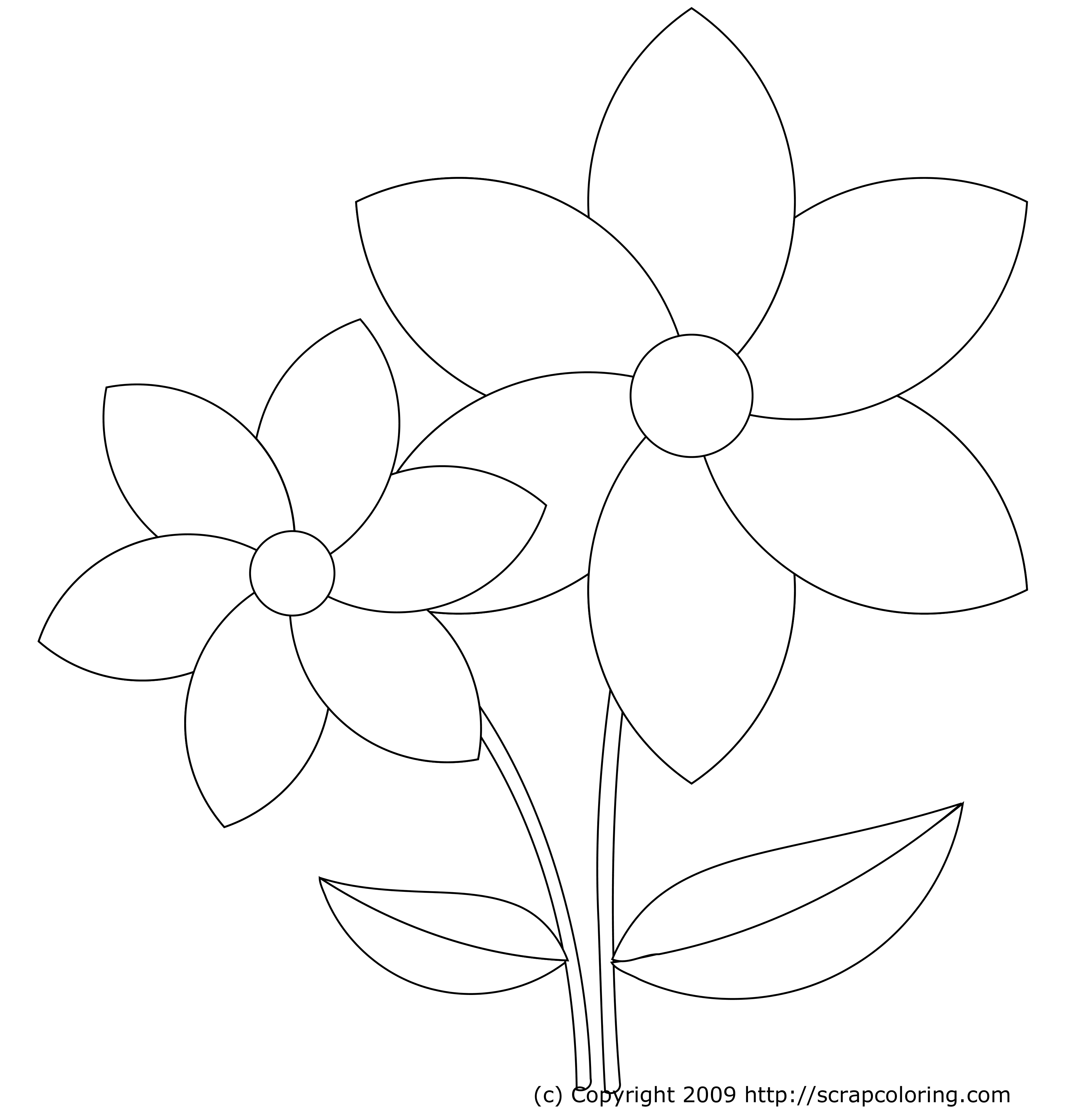 Coloring Page Flower Drawing