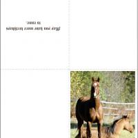 4 Images of Free Printable Christmas Card Horse