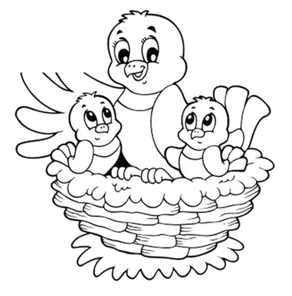 4 Images of Spring Bird Printable Coloring Pages