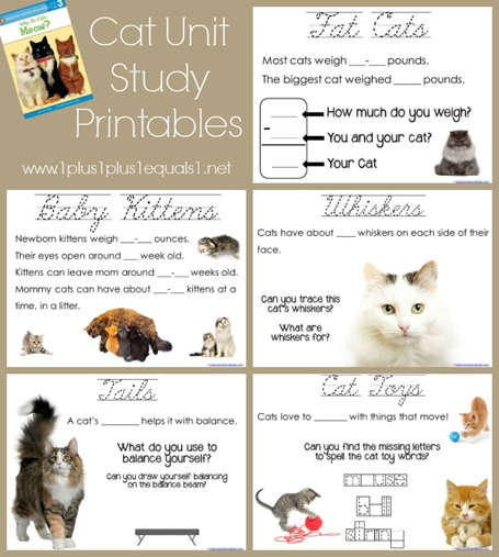 6 Images of Printables For Grade 2 Study