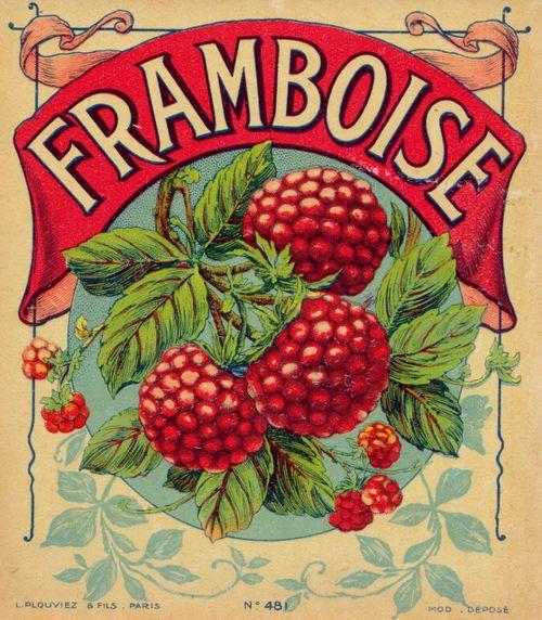 5 Images of Free Printable Vintage Fruit Labels