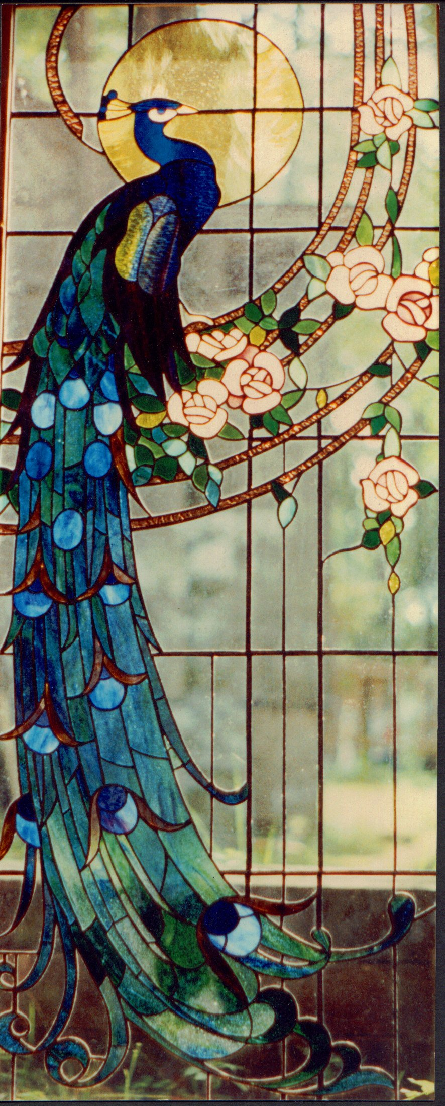 Stained Glass Window Designs : Best images of peacock stained glass patterns free