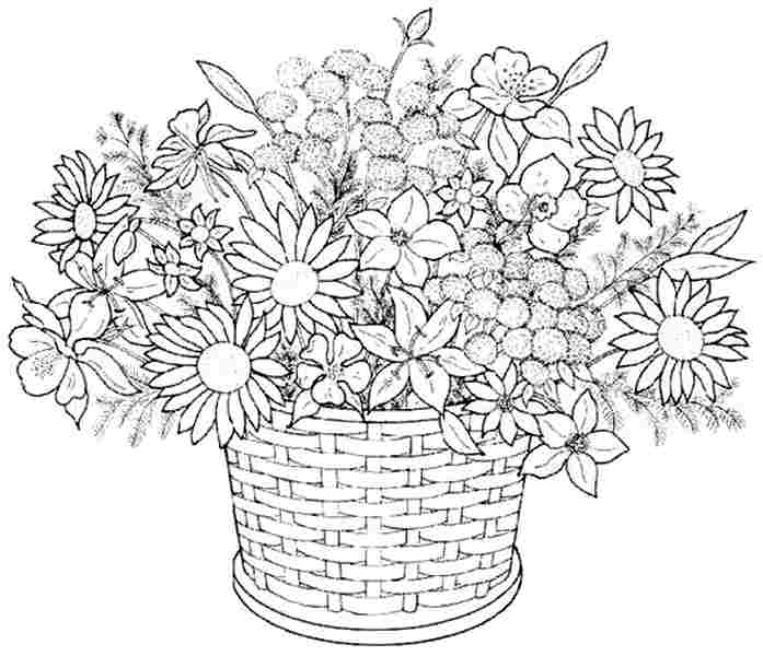 Coloring Pages Of Flowers Printable Sheets