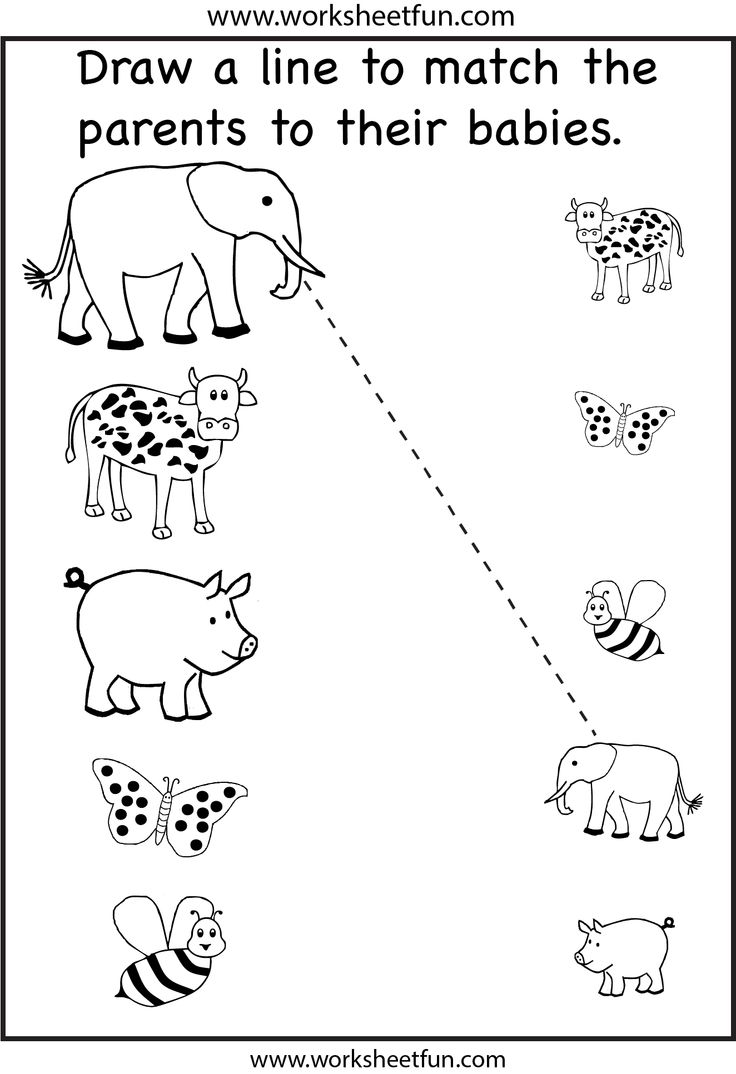 Worksheets For Daycare : Best images of printable preschool matching worksheets