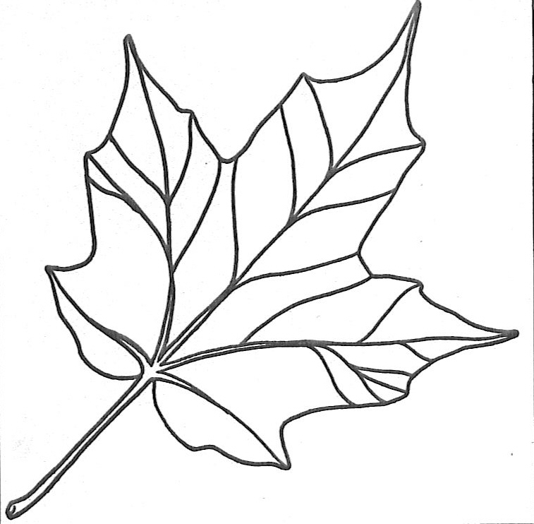 6 Images of Preschool Leaf Coloring Pages Printable
