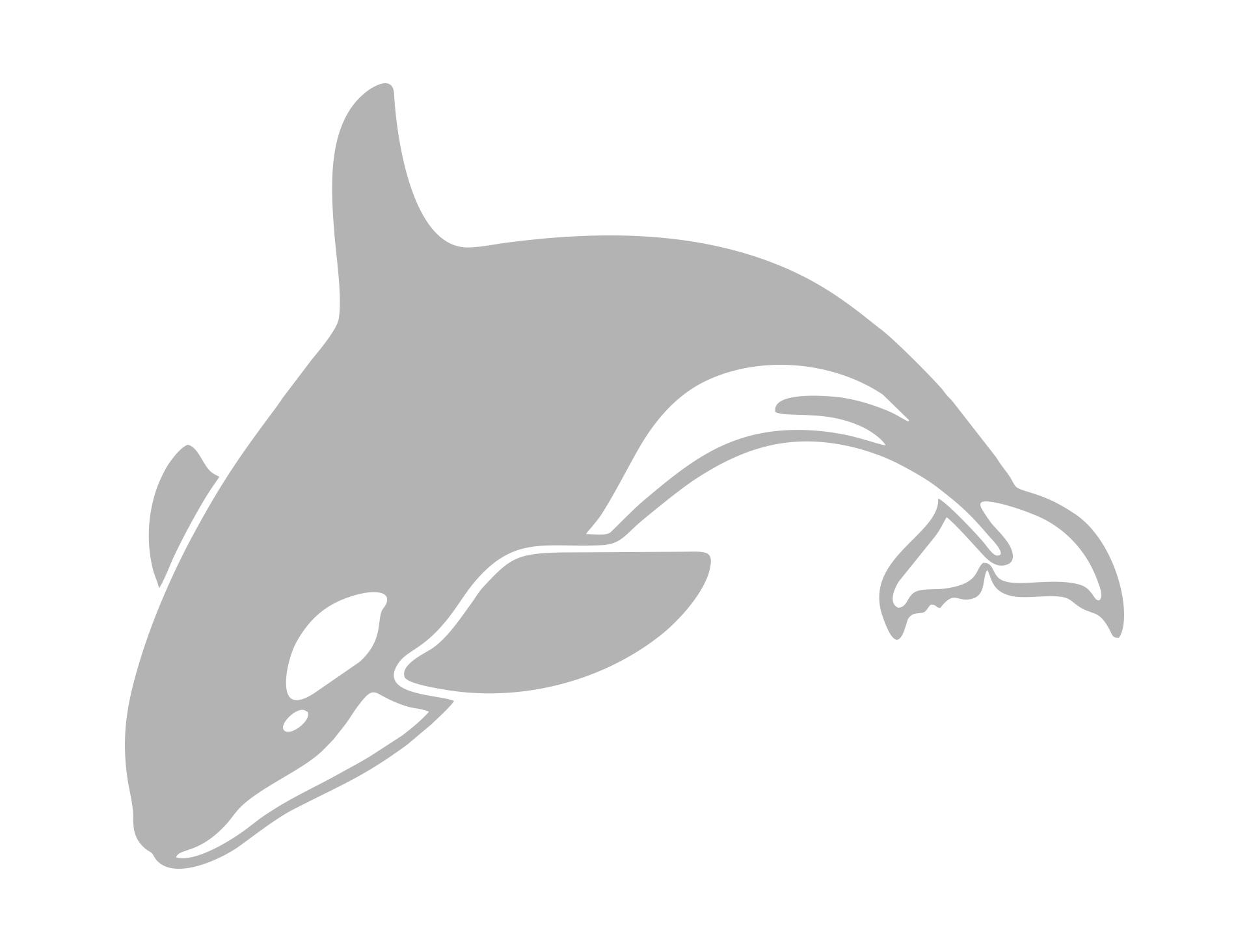 Orca Killer Whale Stencil