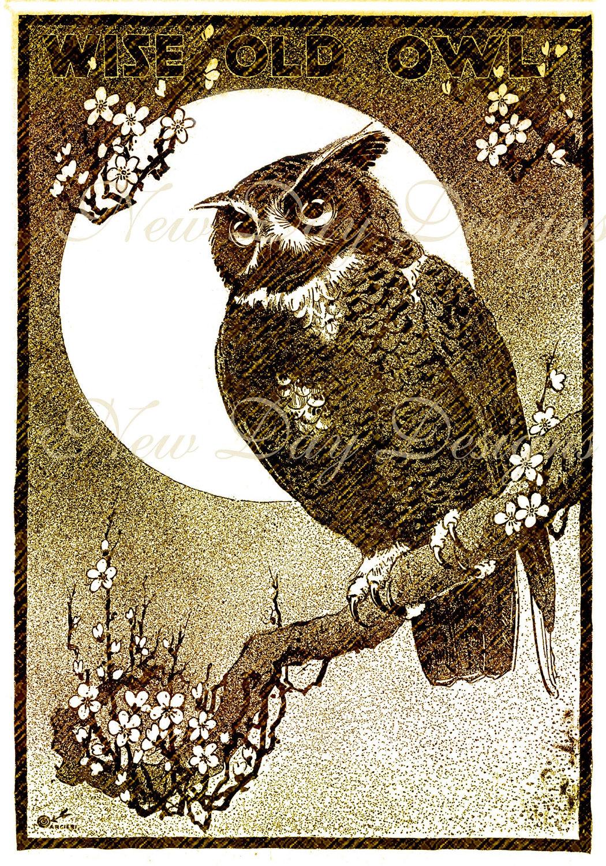 Vintage Halloween Owl Illustrations