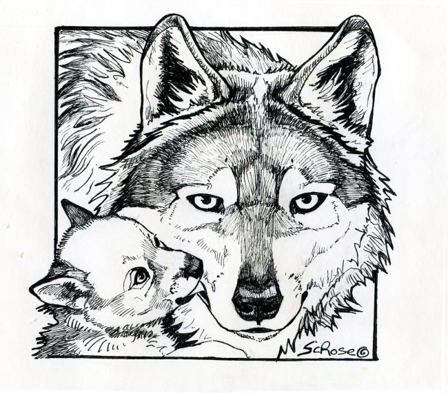 Printable Wolf Coloring Pages Cool Wolf Coloring Pages Printable