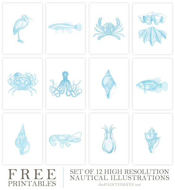 7 Images of Free Printable Nautical Art Prints