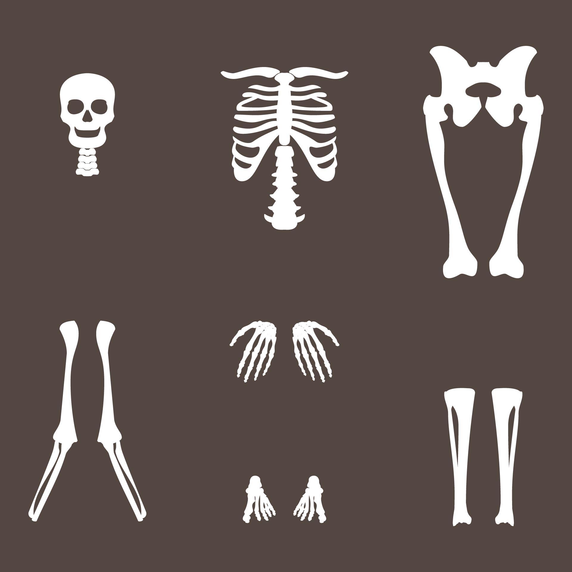 Halloween Skeleton Craft Printable