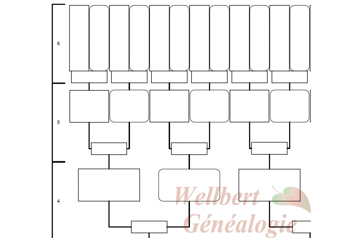 8 Best Images of Family Tree Printable Fill In - Blank ...