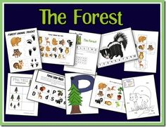 9 best images of track forest animal printables animal