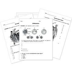 7 Images of Printable Biology Tests