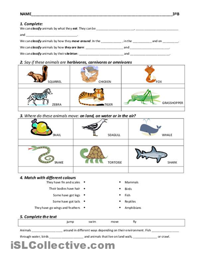 4 Best Images of Free Elementary Printables For October - October ...