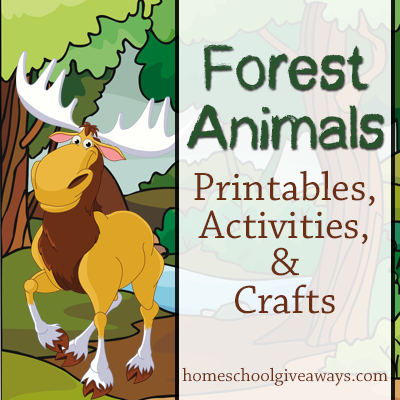 4 Images of Forest Animals Printable